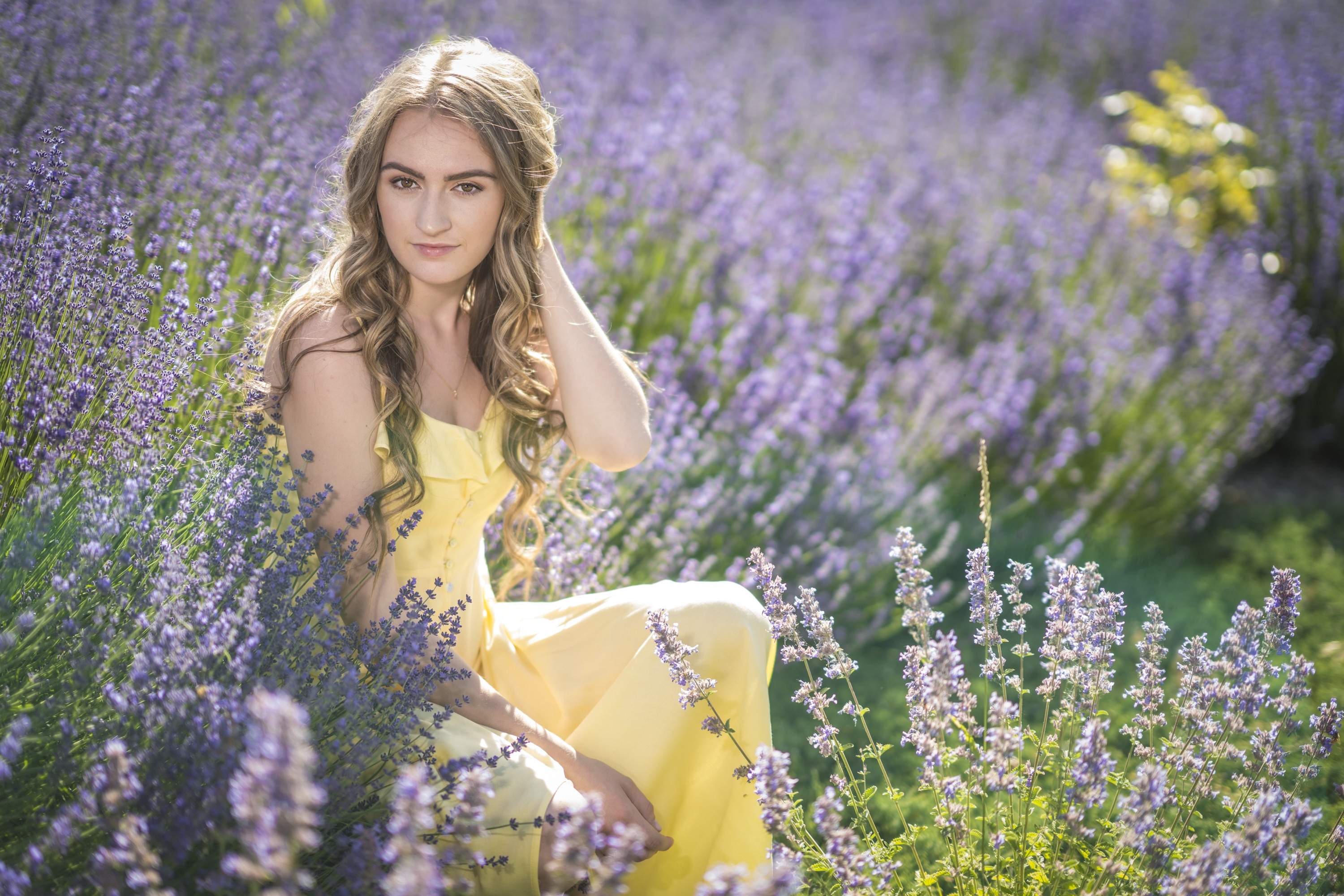 High School Senior picture of a girl in a lavender field wearing a soft yellow sun dress.