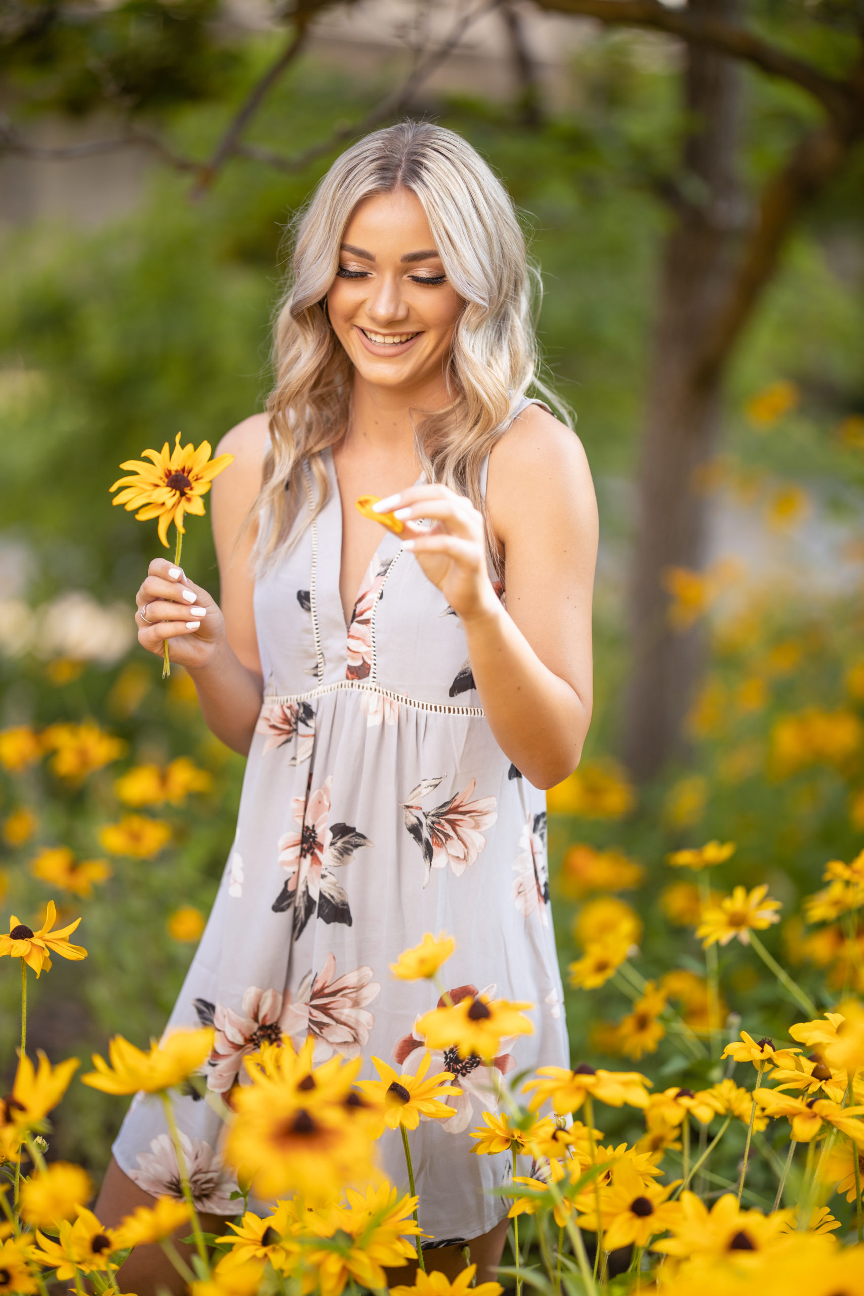senior girl in a field of lazy susan flowers